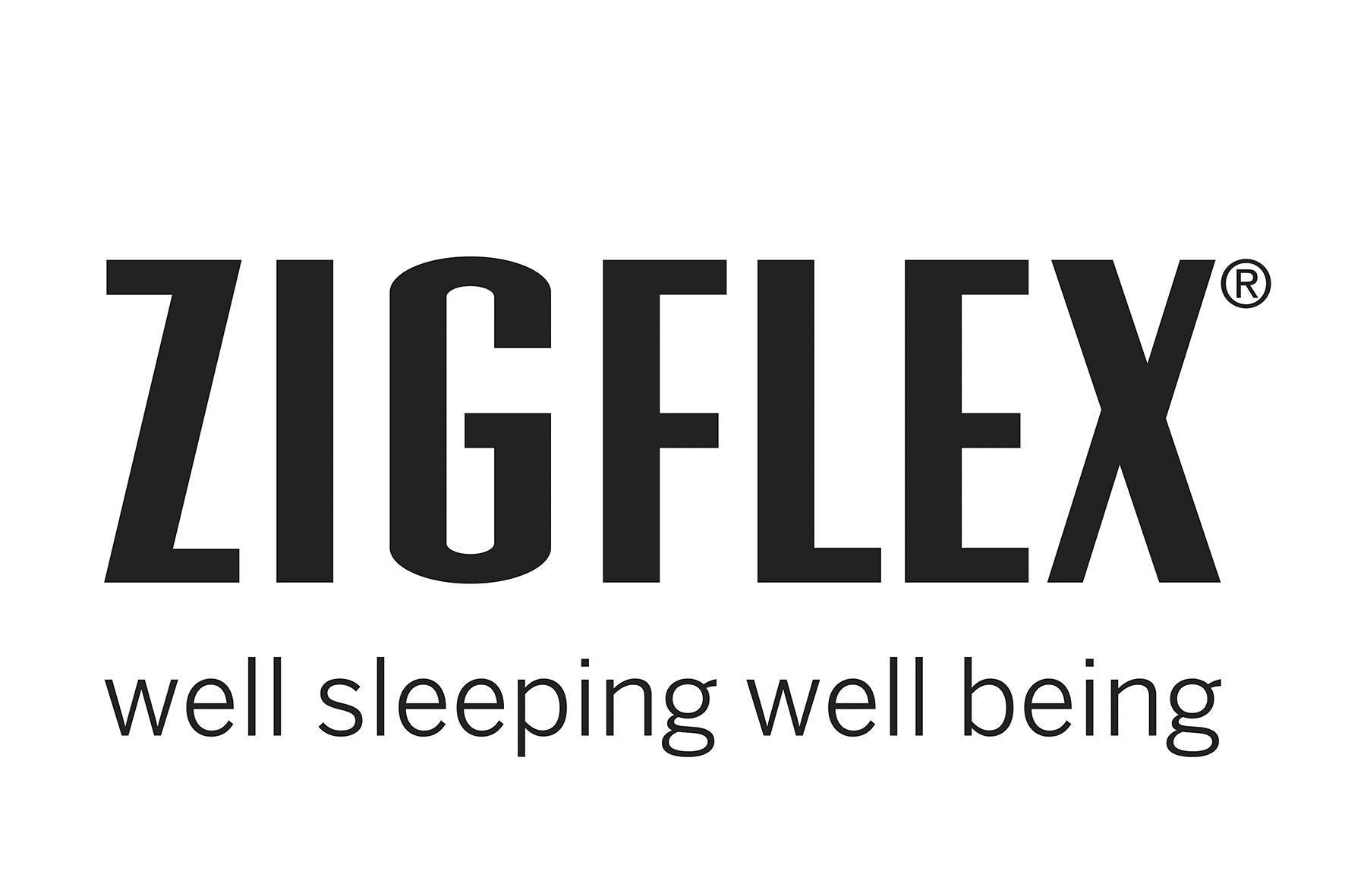 Zigflex Logo